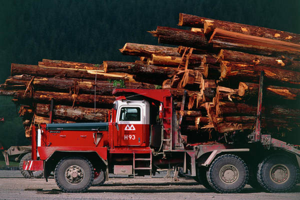 Forestry Photograph - Logging Truck Loaded With Logs by David Nunuk/science Photo Library