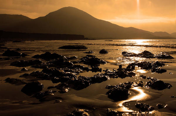 Photograph - Golden Seascape by Aidan Moran