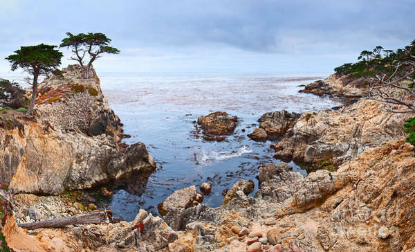Monterey Cypress Photograph - Lone Cypress Panorama - Pebble Beach In Monterey California by Jamie Pham