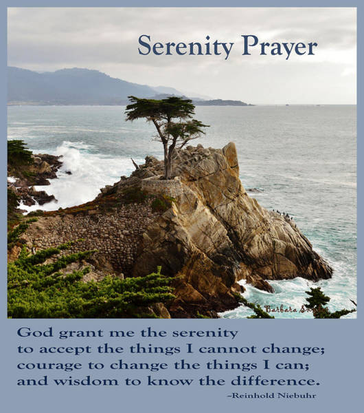Wall Art - Photograph - Lone Cypress Serenity Prayer by Barbara Snyder