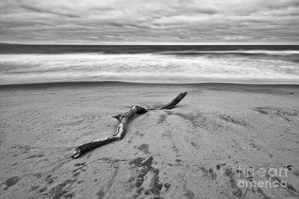 Lone Driftwood In Zmudowski State Beach In Monterey County Black And White Art Print