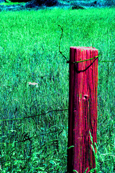 Photograph - Lone Fence Post by Joseph Coulombe