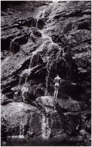 Photograph - Lone Nude At Nancy Cascade by Wayne King