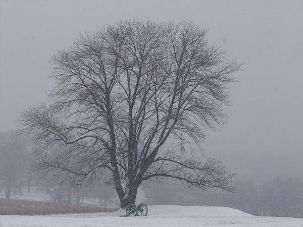 Photograph - Winter In Valley Forge by Louis Dallara