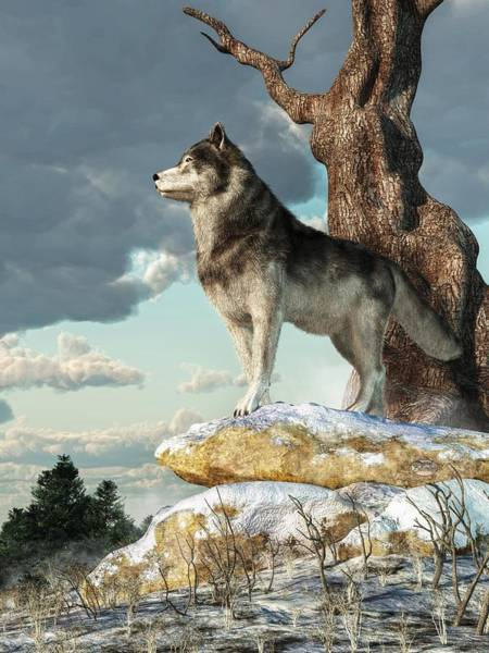 Digital Art - Lone Wolf by Daniel Eskridge