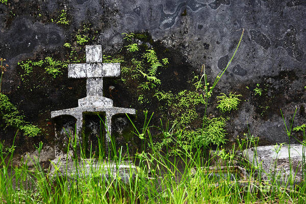 Photograph - Lonely Grave by James Brunker