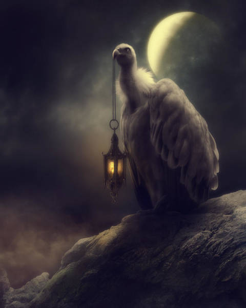 Lonely In The Moonlight Art Print