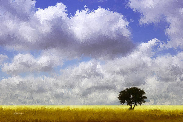 Lone Tree Painting - Lonely On The Prairie by Ann Powell