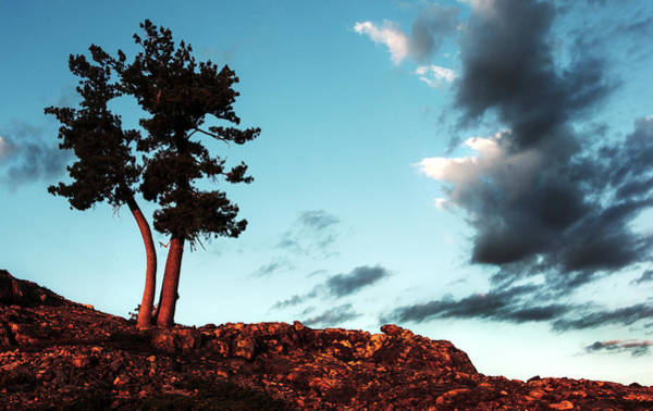 Anglin Wall Art - Photograph - Lonely On Top by Nathan Anglin