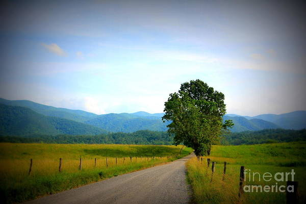 Photograph - Lonesome Road by Cynthia Mask