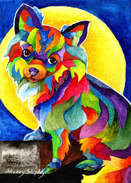 Painting - Long Haired Chihuahua by Sherry Shipley