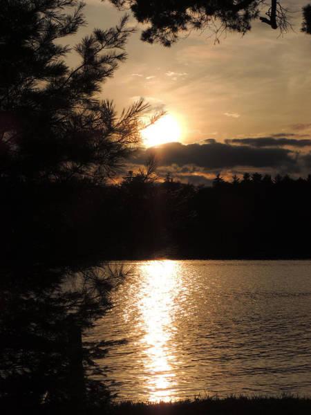 Wall Art - Photograph - Long Lake Sunset by Teresa Schomig