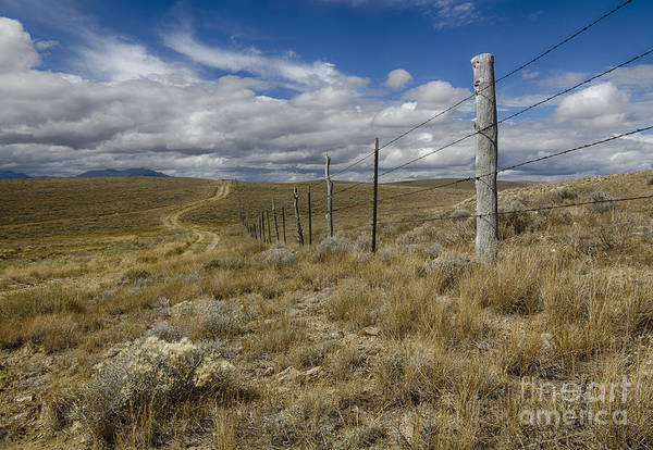 Wall Art - Photograph - Long Lonely Road by Idaho Scenic Images Linda Lantzy