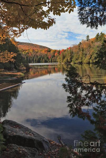 Photograph - Long Pond Peekaboo by Charles Kozierok