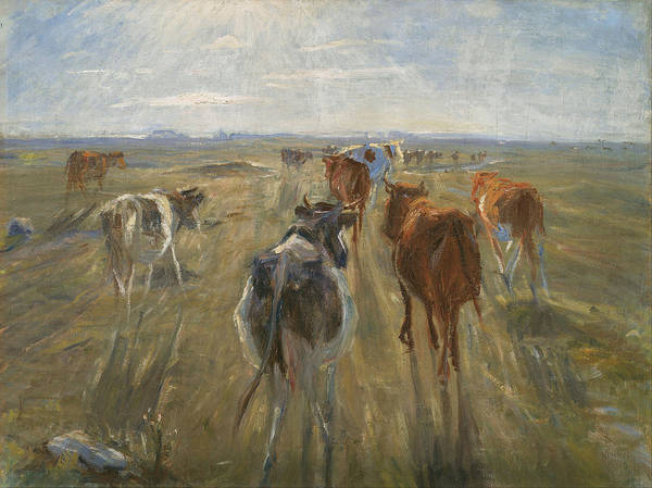 Long Shadow Painting - Long Shadows. Cattle On The Island Of Saltholm by Theodor Philipsen