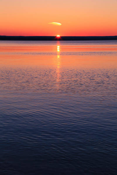 Photograph - Long Sunset by Rachel Cohen