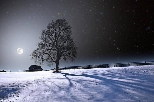 Photograph - Long Winter Shadows by Larry Landolfi