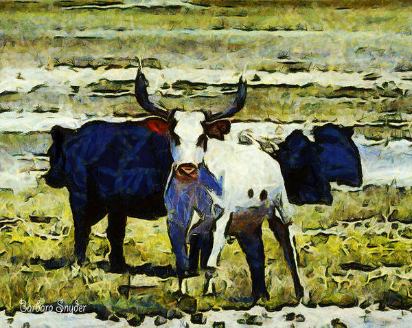Photograph - Longhorn Abstract by Barbara Snyder