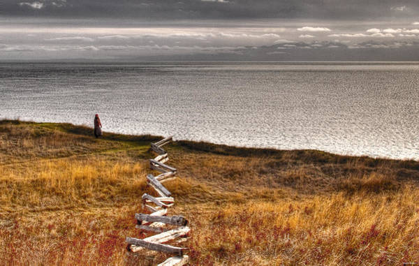 Photograph - Longing by Joseph Noonan