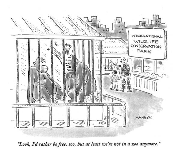 Zoo Animals Drawing - Look, I'd Rather Be Free, Too, But At Least We're by Robert Mankoff