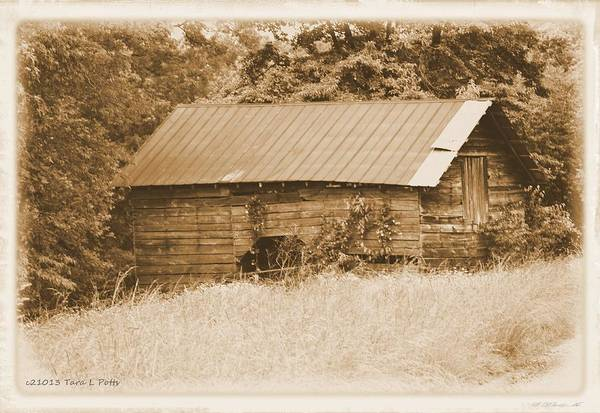 Wall Art - Photograph - Looking Back In Time by Tara Potts