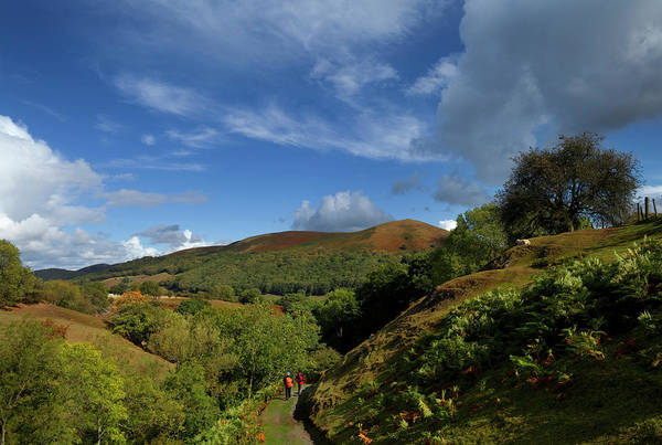 Church Stretton Wall Art - Photograph - Looking Down Valley To Hopes Wood,near by Panoramic Images