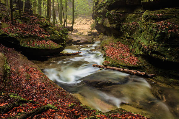 Hocking Hills Photograph - Looking Downstream by Keith Allen