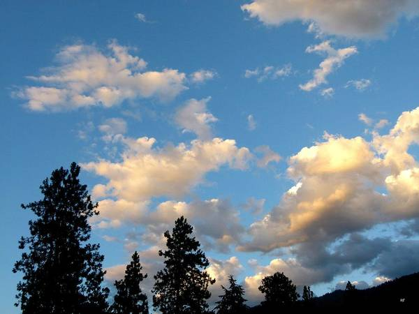End Of Summer Photograph - Looking East At Sundown by Will Borden
