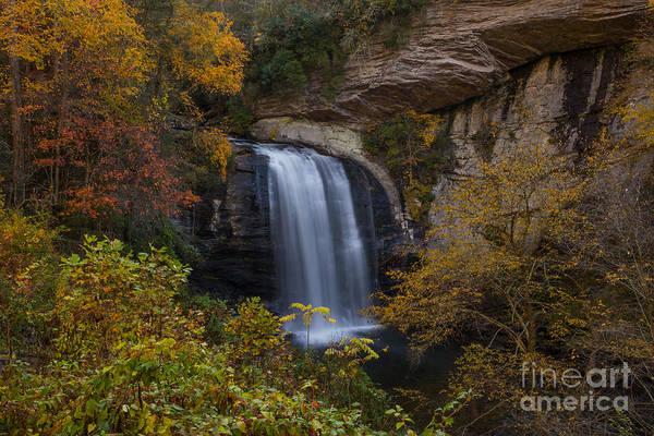 Scenic Byway Photograph - Looking Glass Falls by Bridget Calip