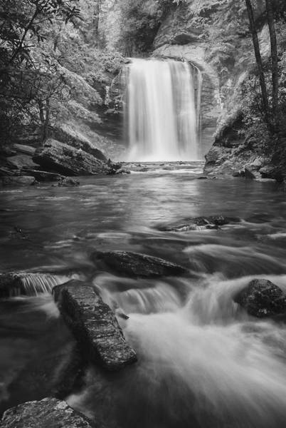 Photograph - Looking Glass Falls by Photography  By Sai