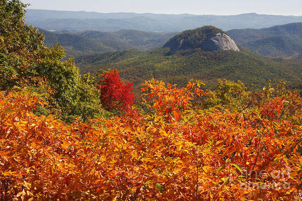 Photograph - Looking Glass Rock by Jill Lang