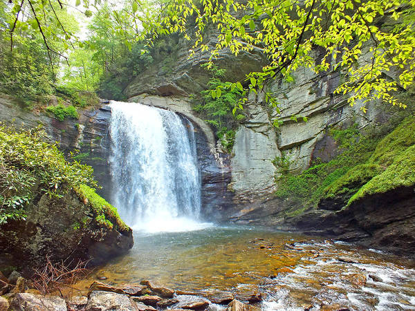Looking Glass Waterfall In The Spring 2 Art Print
