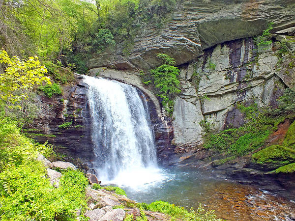 Photograph - Looking Glass Waterfall In The Spring by Duane McCullough