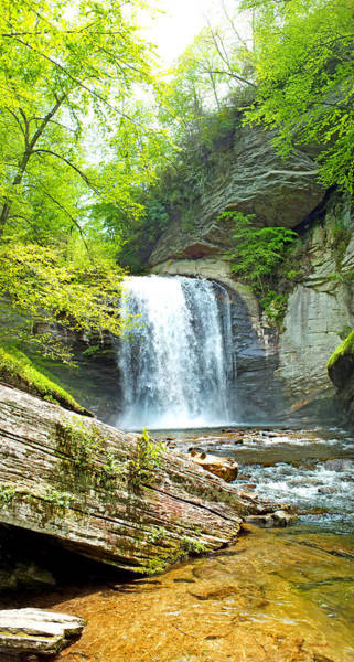 Photograph - Looking Glass Waterfall In The Spring Vertical View by Duane McCullough