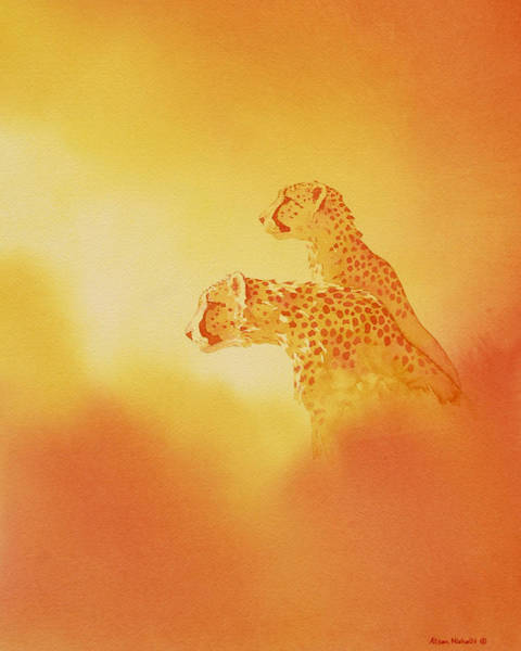 Cheetah Painting - Looking Out by Alison Nicholls