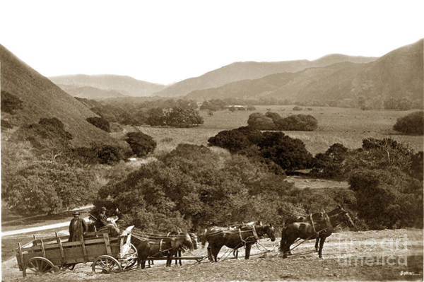 Looking Up The Carmel Valley California Circa 1880 Art Print