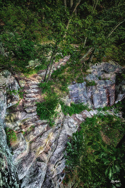Photograph - Lookout Mountain Sunset Rock Trail by Steven Llorca
