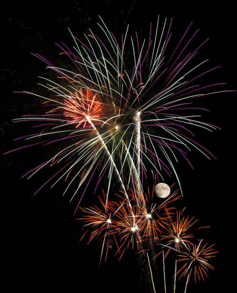 Photograph - Looks Like Flowers - Fireworks And Moon by Penny Lisowski