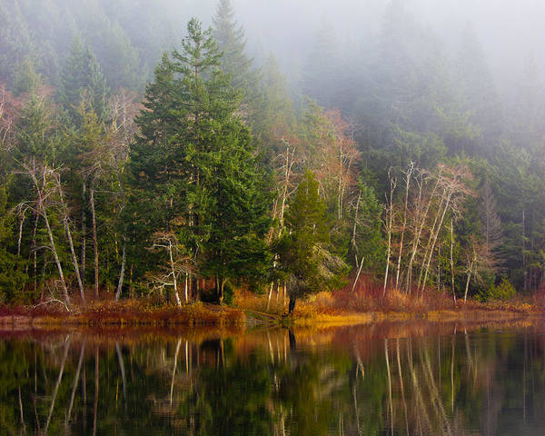 Photograph - Loon Lake by Randy Hall