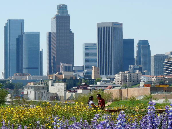 Photograph - Los Angeles Skyline Romance by Jeff Lowe