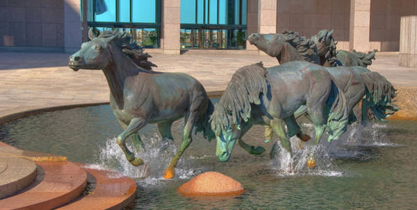 Photograph - Los Colinas Mustangs 14675 by Guy Whiteley