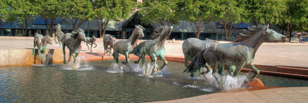 Photograph - Los Colinas Mustangs 14707 by Guy Whiteley