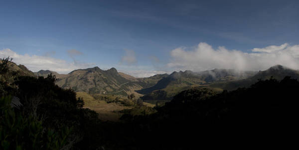 Photograph - Los Nevados Natural Park Central Andes Colombia by Tony Mills