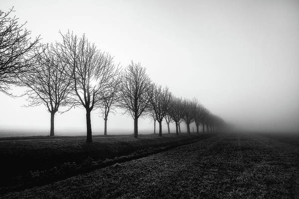 Losing Sight Art Print by Christophe Staelens