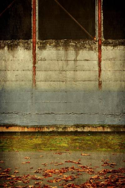 Photograph - Lost And Empty by Patricia Strand