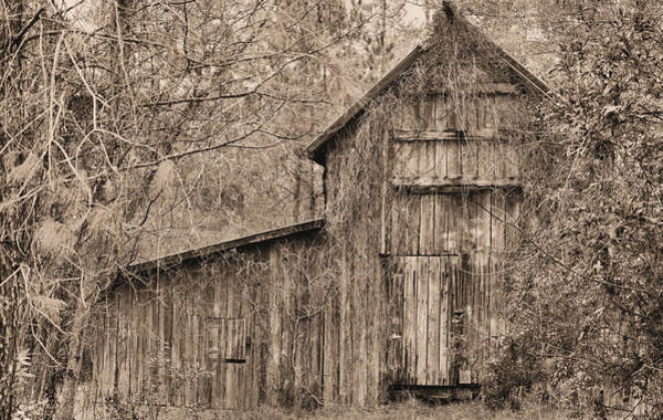 Photograph - Lost And Found Sepia by JC Findley
