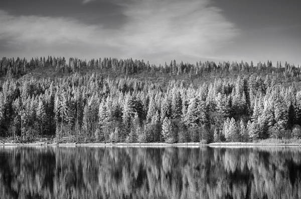 Monotone Photograph - Lost In Reflection by Laurie Search
