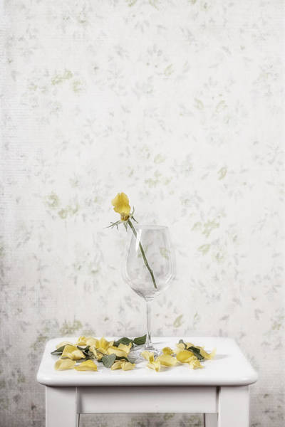 Petal Wall Art - Photograph - Lost Petals by Joana Kruse