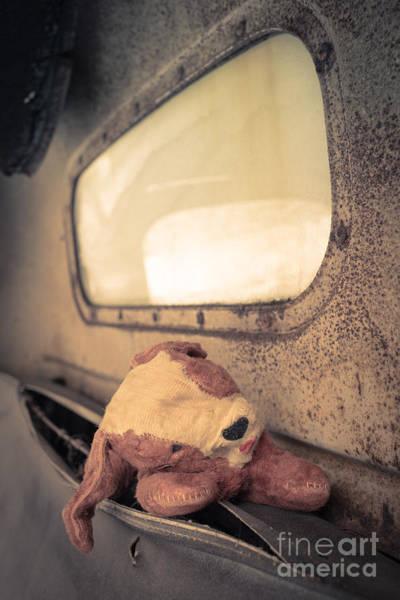 Wall Art - Photograph - Lost Puppy by Edward Fielding