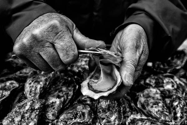 Hand Photograph - L'ostreiculteur  Oyster Farmer by Manu Allicot